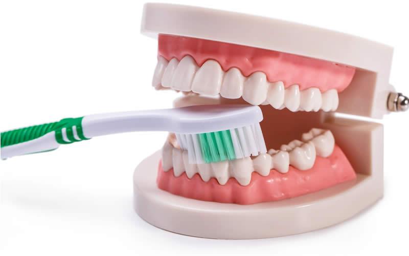 diş fırçalama kuralları hangileri